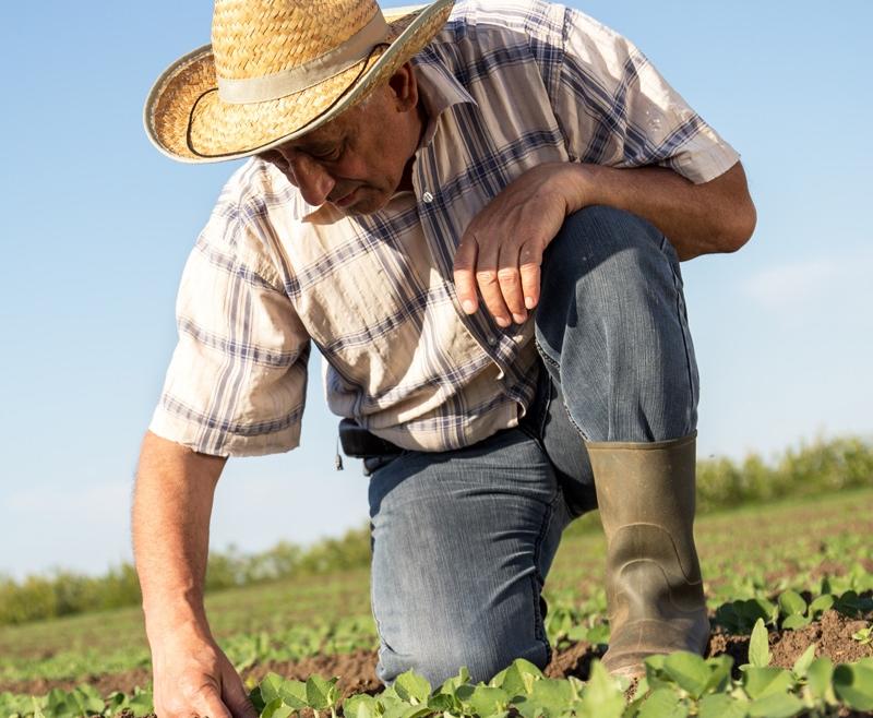 Sei un agricoltore?