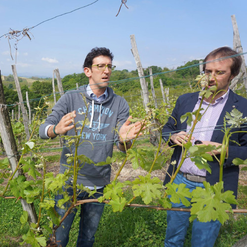 Il Chiosso – Cantina Vini Alto Piemonte